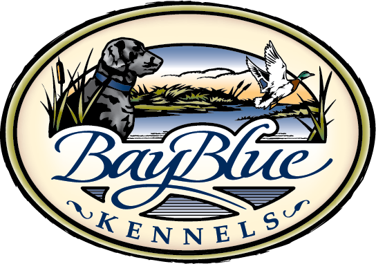 baybluekennels_color